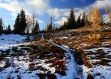 Transition from Autumn to Winter along the PCT