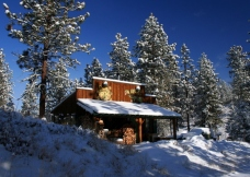 Cozy Cabin Winter Wonder Lande